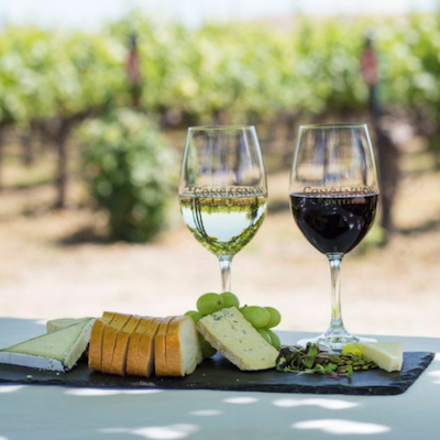 2 glasses of wine. a slate board with slices of bread, various cheeses and grapes on a vineyard background